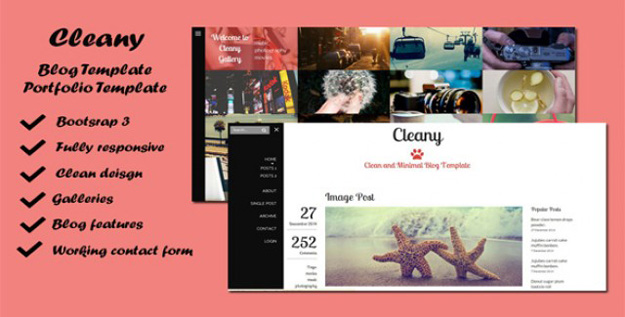 Cleany - Blog and Portfolio Template