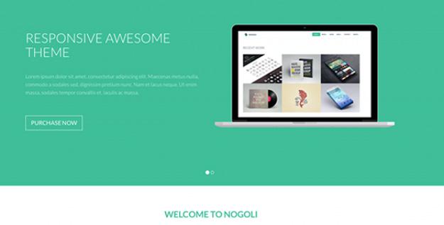 nogoli - awesome responsive theme copy