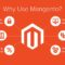 Smart Tips to Improve Safety On Your Magento Website