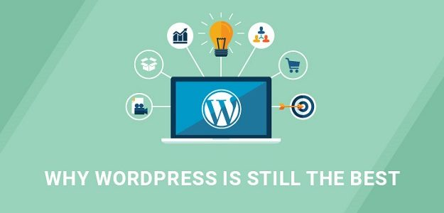 Top 5 Reasons that Make WordPress as the Best Platform for SEO