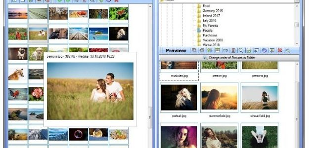 Top 6 Photo Manager Software You Should Know